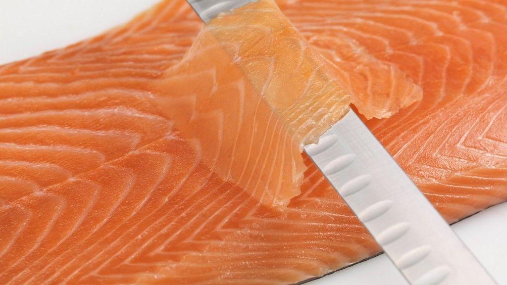 atelier saumon